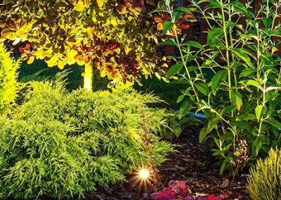 AQUAPRO-category-thumb__pond-garden-lighting